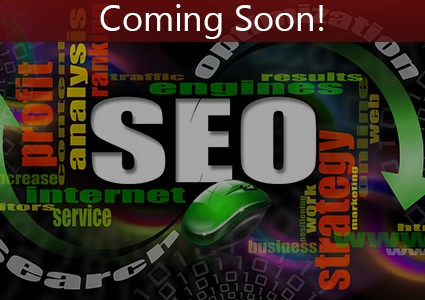 Coming Soon: Website Visibility 101